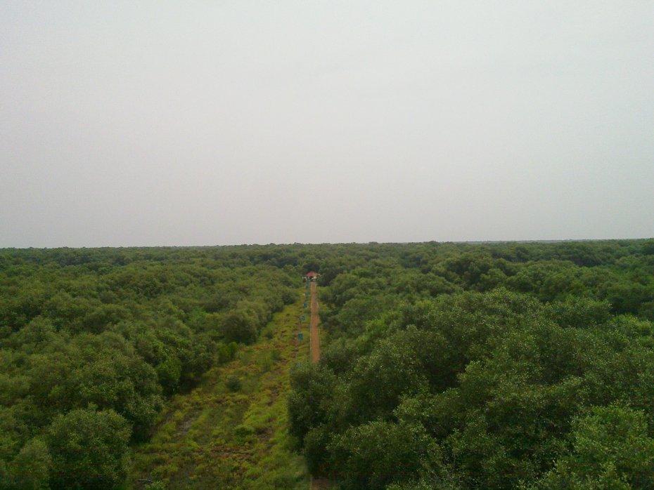 20110918_069